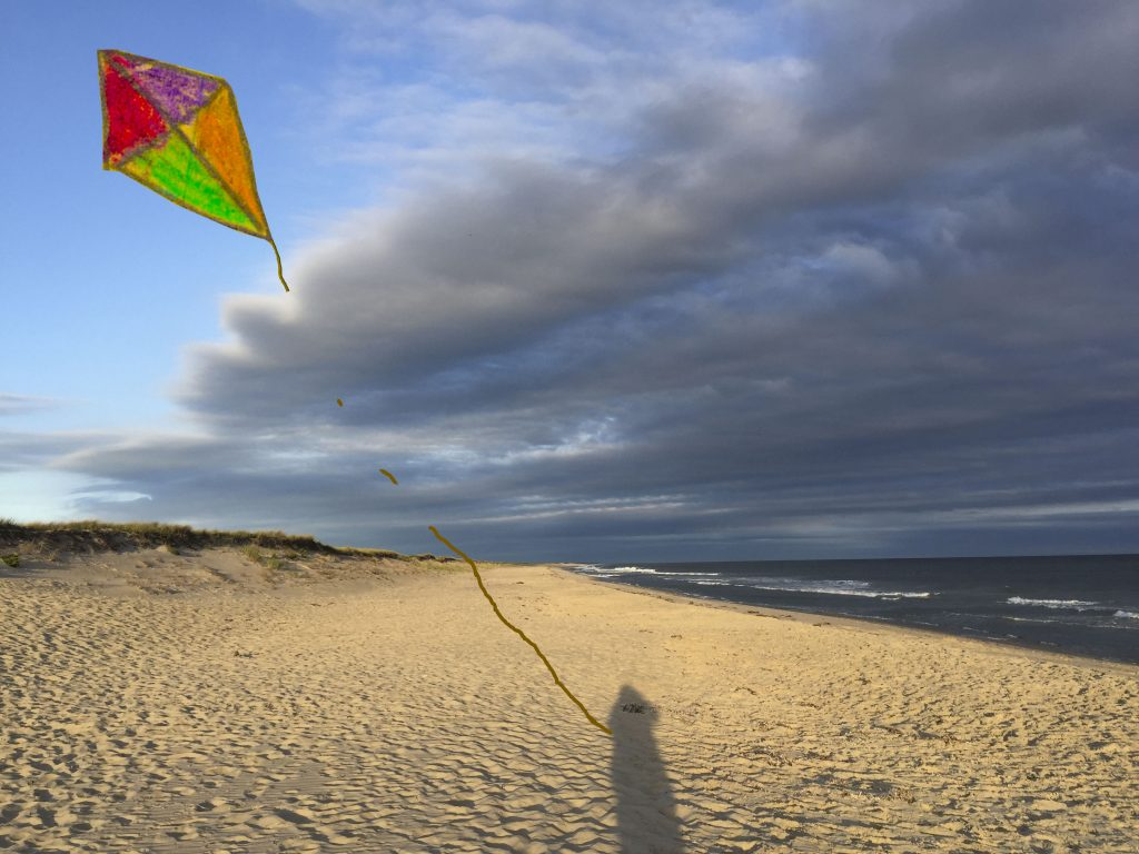 Shadow beach kite